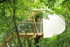 Huwelijksnacht in een boomhut