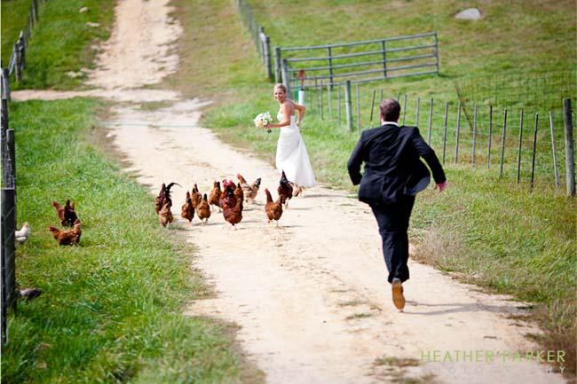 Je bruiloft vieren op een boerderij
