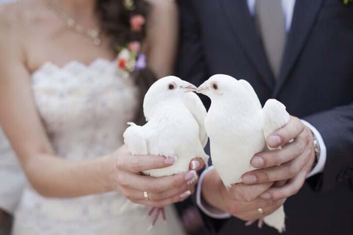 Bruidsduiven laten uitvliegen